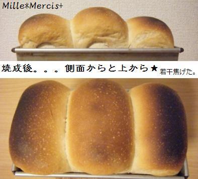 黒糖ミルクジンジャー山食@金柑酵母_a0348473_13174918.jpg