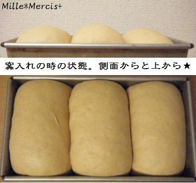 黒糖ミルクジンジャー山食@金柑酵母_a0348473_13174966.jpg