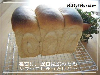 黒糖ミルクジンジャー山食@金柑酵母_a0348473_13174992.jpg