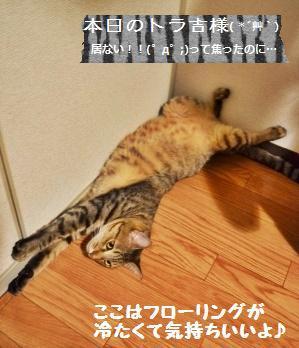 【雅子先生レシピ】Eマフィン_a0348473_13290477.jpg