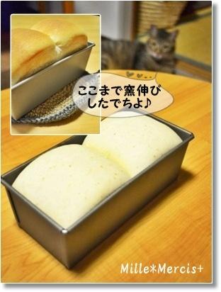 【雅子先生レシピ】パン・ド・ミ_a0348473_13290738.jpg
