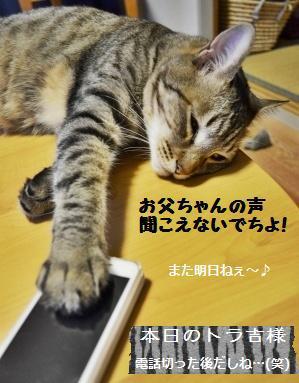 【雅子先生レシピ】パン・ド・ミ_a0348473_13291075.jpg