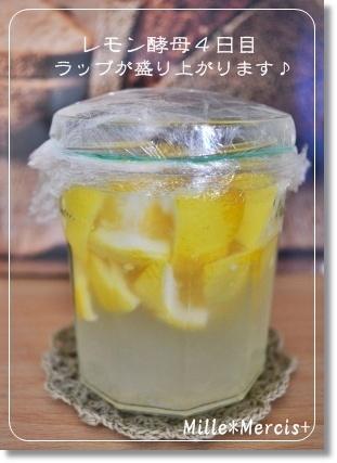 濃厚レモンカードとレモン酵母_a0348473_13300702.jpg
