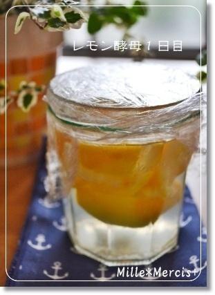 濃厚レモンカードとレモン酵母_a0348473_13300734.jpg
