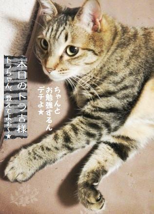 ロティ・オラン☆ライ麦パン美味しさの秘密!?_a0348473_13352757.jpg