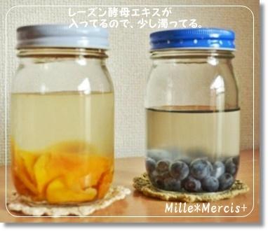 ドライマンゴー酵母とブルーベリー酵母_a0348473_13412924.jpg