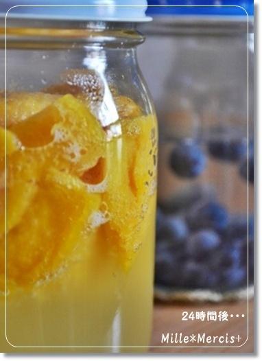ドライマンゴー酵母とブルーベリー酵母_a0348473_13413082.jpg