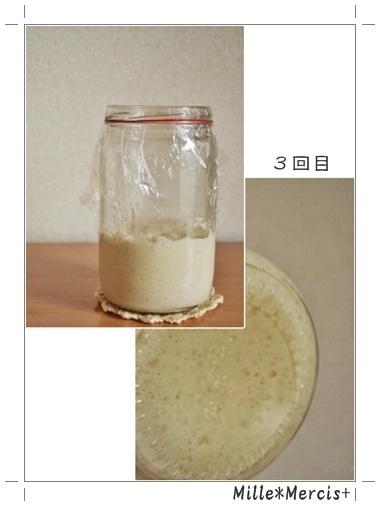 カナパンさんの玄米酵母元種完成しました★_a0348473_13464341.jpg