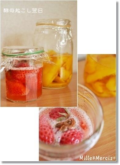 濃厚いちご酵母とマンゴー酵母_a0348473_13475630.jpg