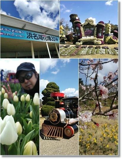 浜名湖花博2014とイルミネーション_a0348473_13480820.jpg