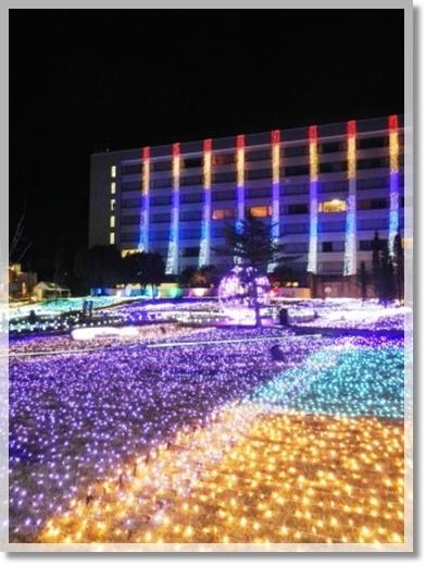 浜名湖花博2014とイルミネーション_a0348473_13480870.jpg