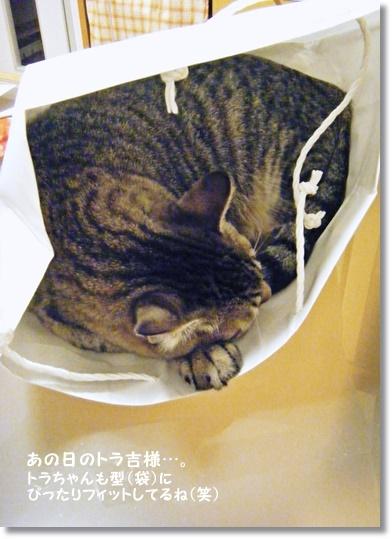 【レシピ】人参とオレンジのしっとり食パン_a0348473_13530791.jpg