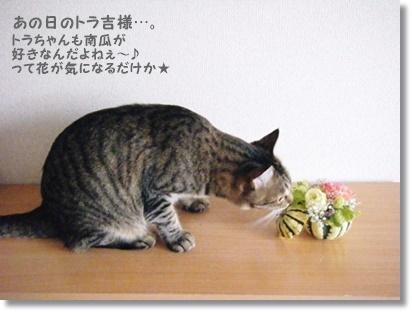 レシピ有☆ふわっふわ~な真っ白しろパン♡_a0348473_13530855.jpg