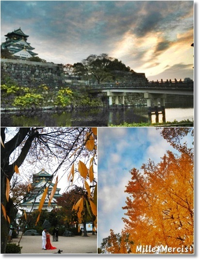リサのオブジェとかスプーンのこと。大阪城の黄葉_a0348473_13533618.jpg