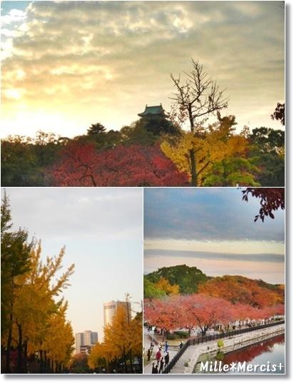 リサのオブジェとかスプーンのこと。大阪城の黄葉_a0348473_13533654.jpg