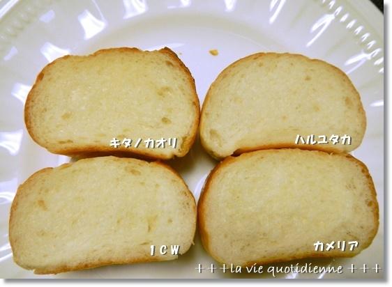 大失敗のチョコケーキ&4種の焼き比べ&レシピランキング_a0348473_14275906.jpg