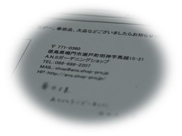 e0264374_15594706.jpg