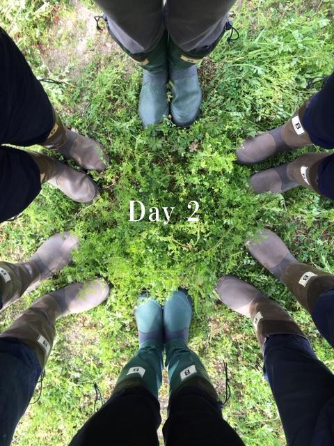 畑プロジェクト Day 2_c0116778_6373484.jpg