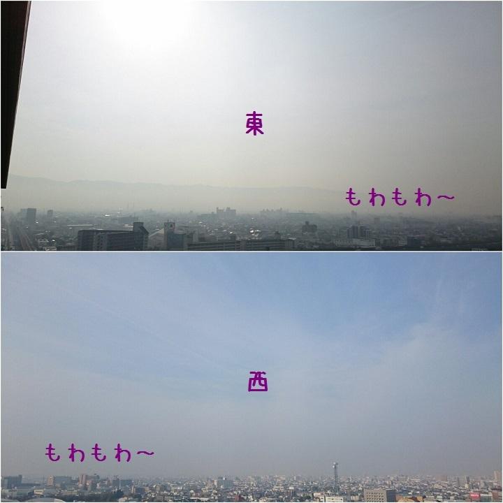 c0363378_16052012.jpg