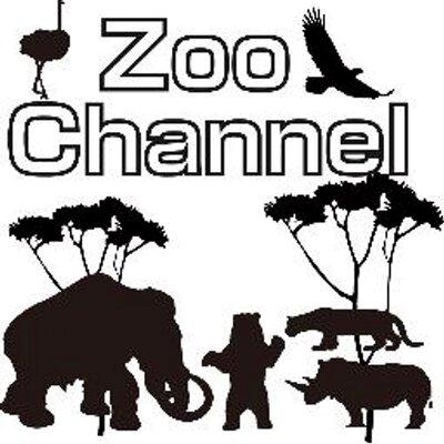 ZOOチャンネルより二点ほどお願いです。 んの巻_f0236990_1553943.png