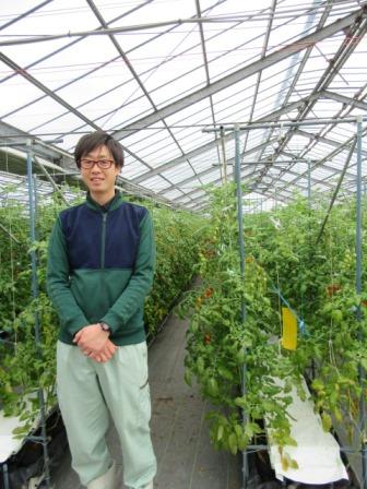 静岡のトマト「アメーラ!」 _a0154793_12292418.jpg