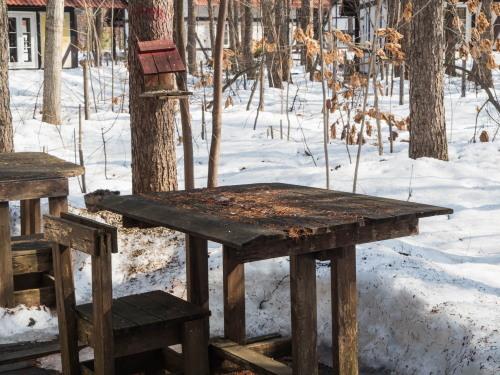 """3月最終日・・ついに""""カンタベリー積雪計""""の雪が消えそうです。_f0276498_23183270.jpg"""