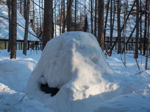 """3月最終日・・ついに""""カンタベリー積雪計""""の雪が消えそうです。_f0276498_23185496.jpg"""