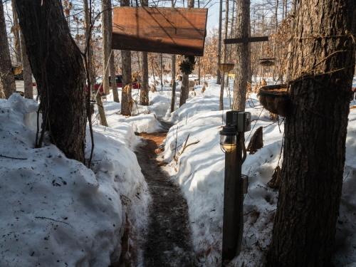 """3月最終日・・ついに""""カンタベリー積雪計""""の雪が消えそうです。_f0276498_23191582.jpg"""