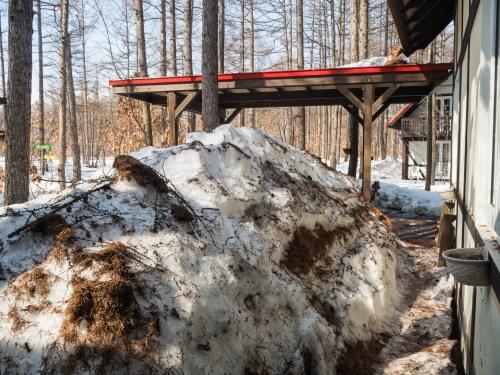 """3月最終日・・ついに""""カンタベリー積雪計""""の雪が消えそうです。_f0276498_23214217.jpg"""