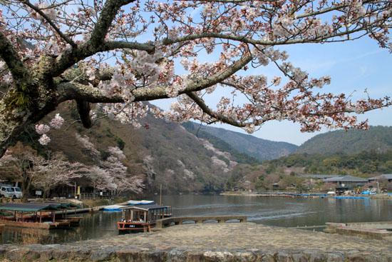 16桜だより17 嵐山2 渡月橋あたり_e0048413_18175356.jpg