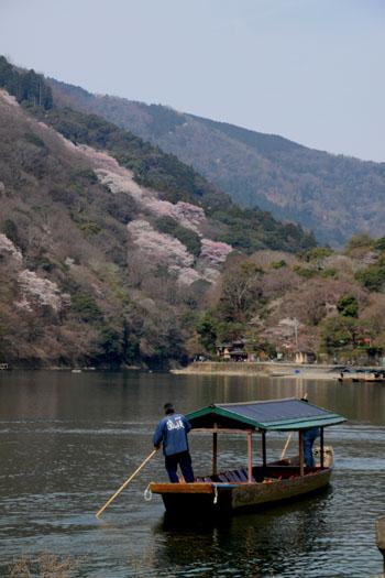 16桜だより17 嵐山2 渡月橋あたり_e0048413_1818399.jpg