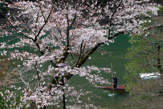 16桜だより17 嵐山2 渡月橋あたり_e0048413_18185849.jpg