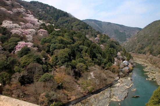 16桜だより18 嵐山3 亀山公園_e0048413_20424838.jpg