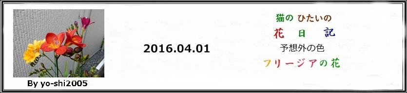 e0033229_1973199.jpg