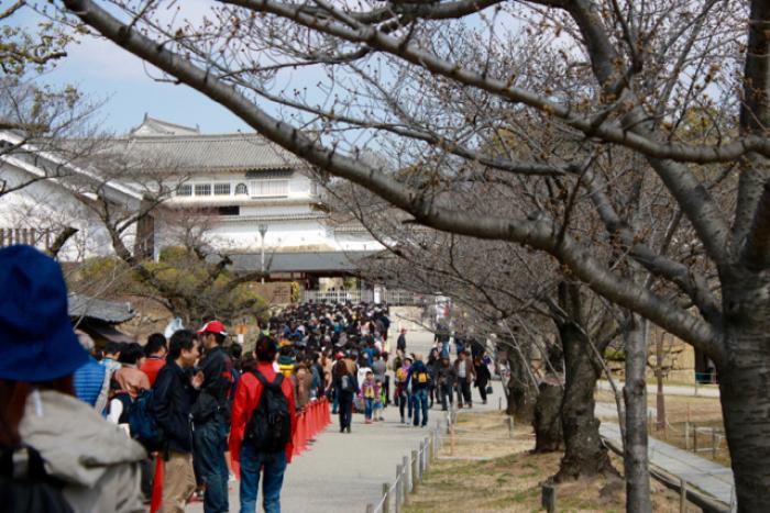 【姫路城】春の旅 part 8_f0348831_22355382.jpg