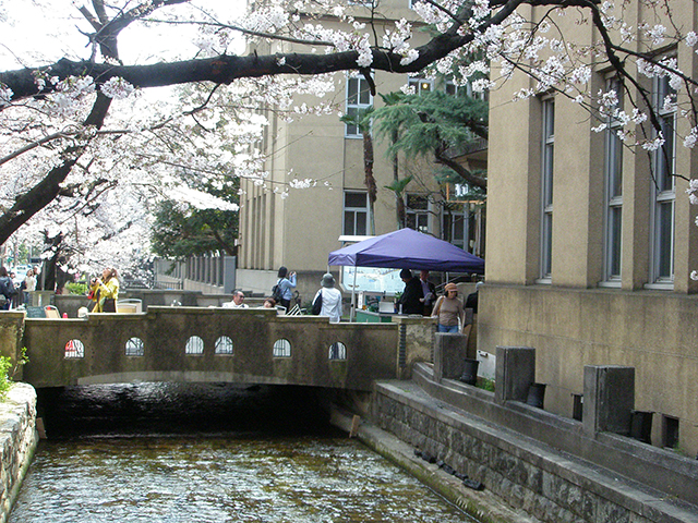 京都・レトロモダン建築 2_a0099744_19551963.jpg