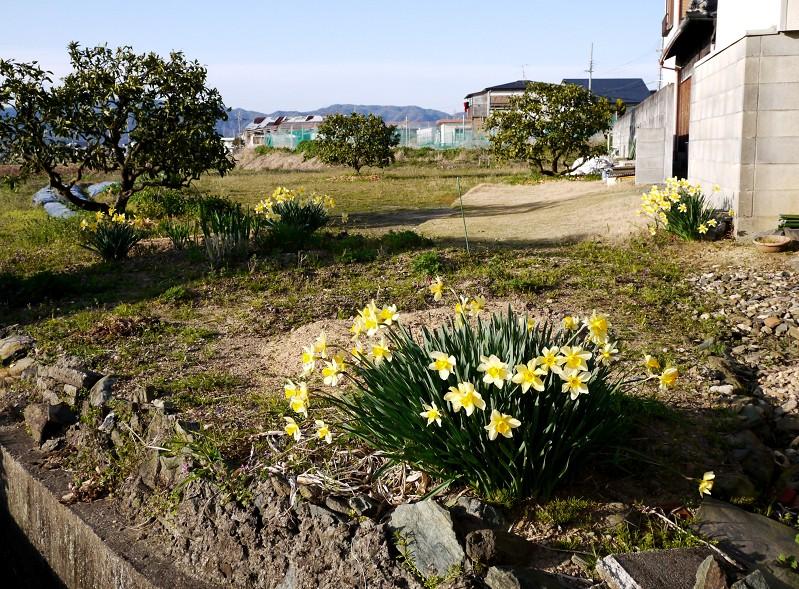 里山の風景_b0093754_1442387.jpg