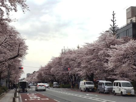 4月のお休み_f0196455_146348.jpg