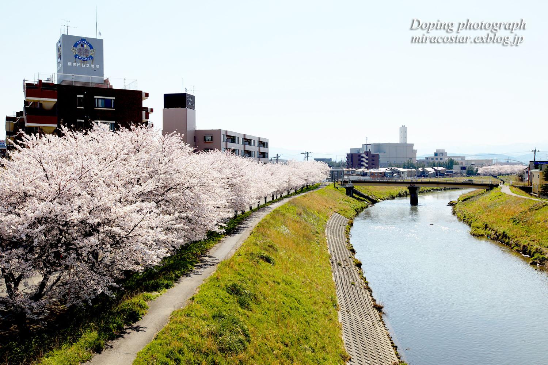 春の陽気_e0140159_21584747.jpg