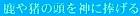<2016年4月>諏訪探訪③:御柱祭・守屋山・古事記に隠された諏訪ユダヤミステリー_c0119160_6175429.jpg