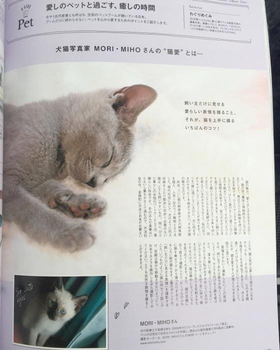 雑誌に載りました_b0123371_15011269.jpeg