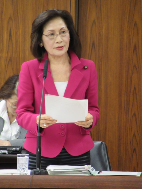 3/31 外交防衛委員会で質問&おもいやり予算への反対討論を行いました。_f0150886_11214977.jpg