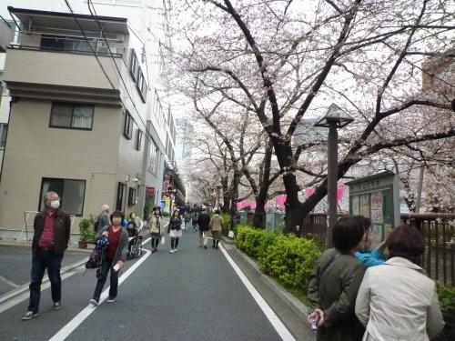 ポタリング 目黒川の花見_a0262093_17560182.jpg