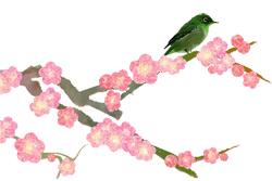 春爛漫。_b0044115_9384859.jpg