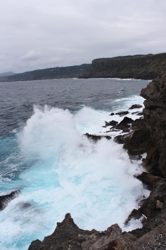 島へ、お茶旅2_b0220318_06385393.jpg
