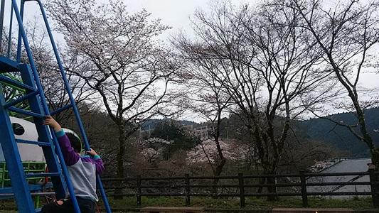 プチ便り( 春休み② )_a0206870_2334657.jpg