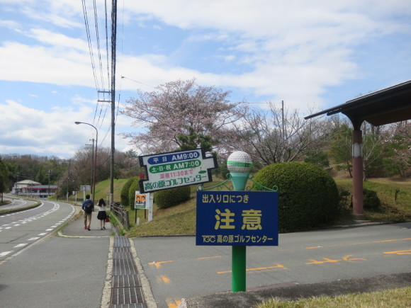 奈良、桜をめぐる散歩~そんなところは紹介せんでもええ~_c0001670_21583536.jpg