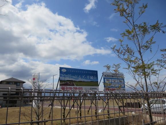 奈良、桜をめぐる散歩~そんなところは紹介せんでもええ~_c0001670_21585749.jpg