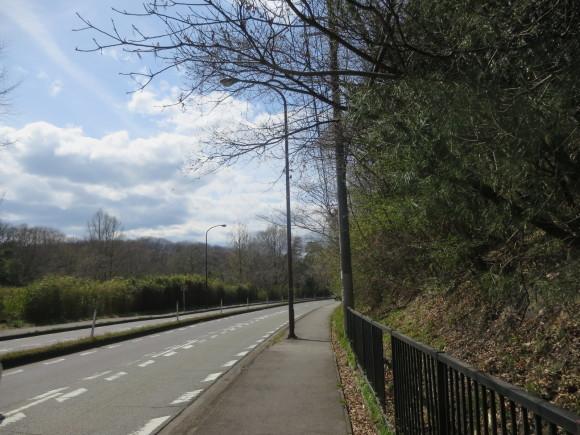 奈良、桜をめぐる散歩~そんなところは紹介せんでもええ~_c0001670_22134985.jpg