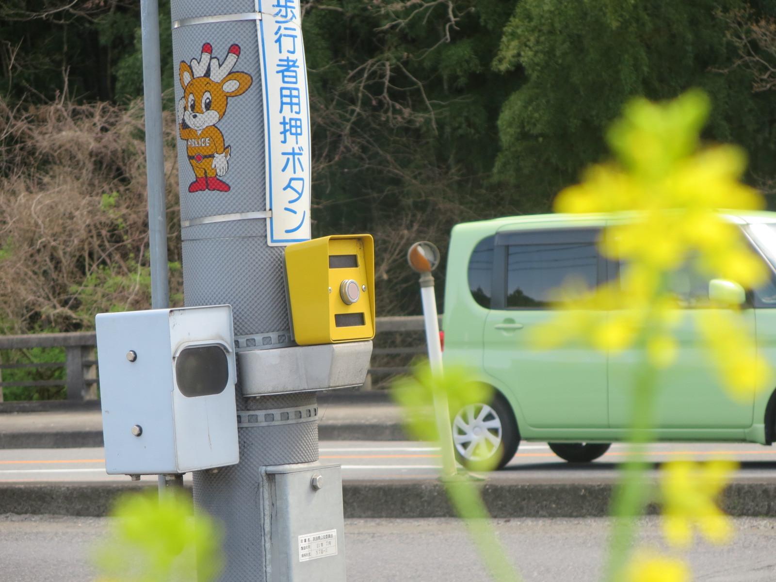 奈良、桜をめぐる散歩~そんなところは紹介せんでもええ~_c0001670_22192064.jpg
